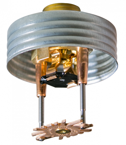 Product image for RFC Series Residential Concealed Pendent Sprinklers